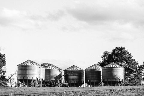 Silos II Photographic Print
