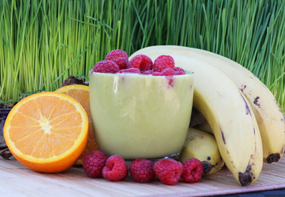 Barley & Wheat Grass Smoothie