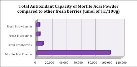 organic-acai-powder-antioxidants.jpg