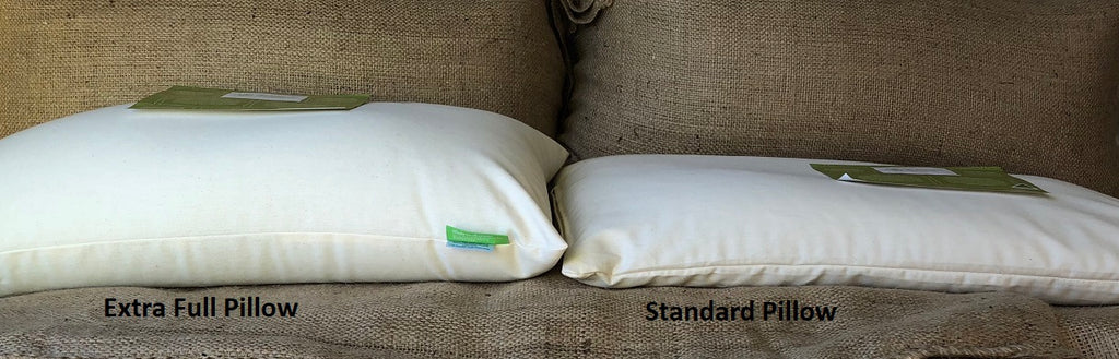 Buckwheat Hull Pillow STANDARD EXTRA FULL - WHITE