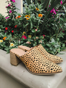 Stephanie Cheetah Slip-On Heel