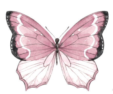 Watercolour Butterfly Decal Set