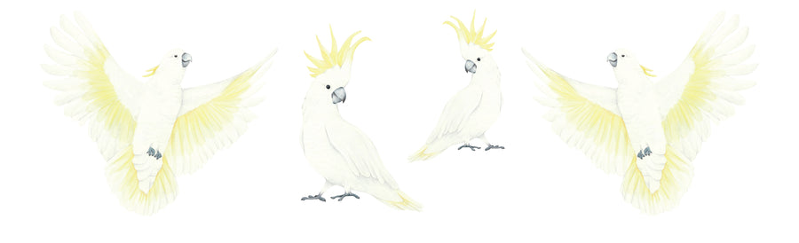 Watercolour Cockatoos