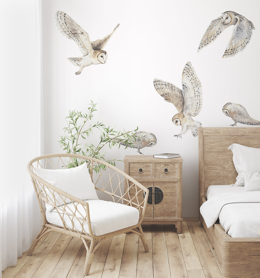 Barn Owl Decal Set