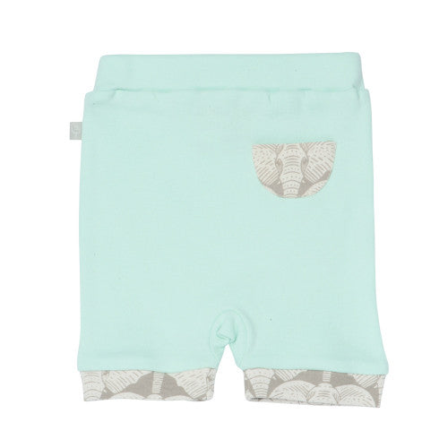 Shorts - Gossamer Green Back