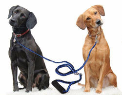 Pet Leash - Double Dog Leash