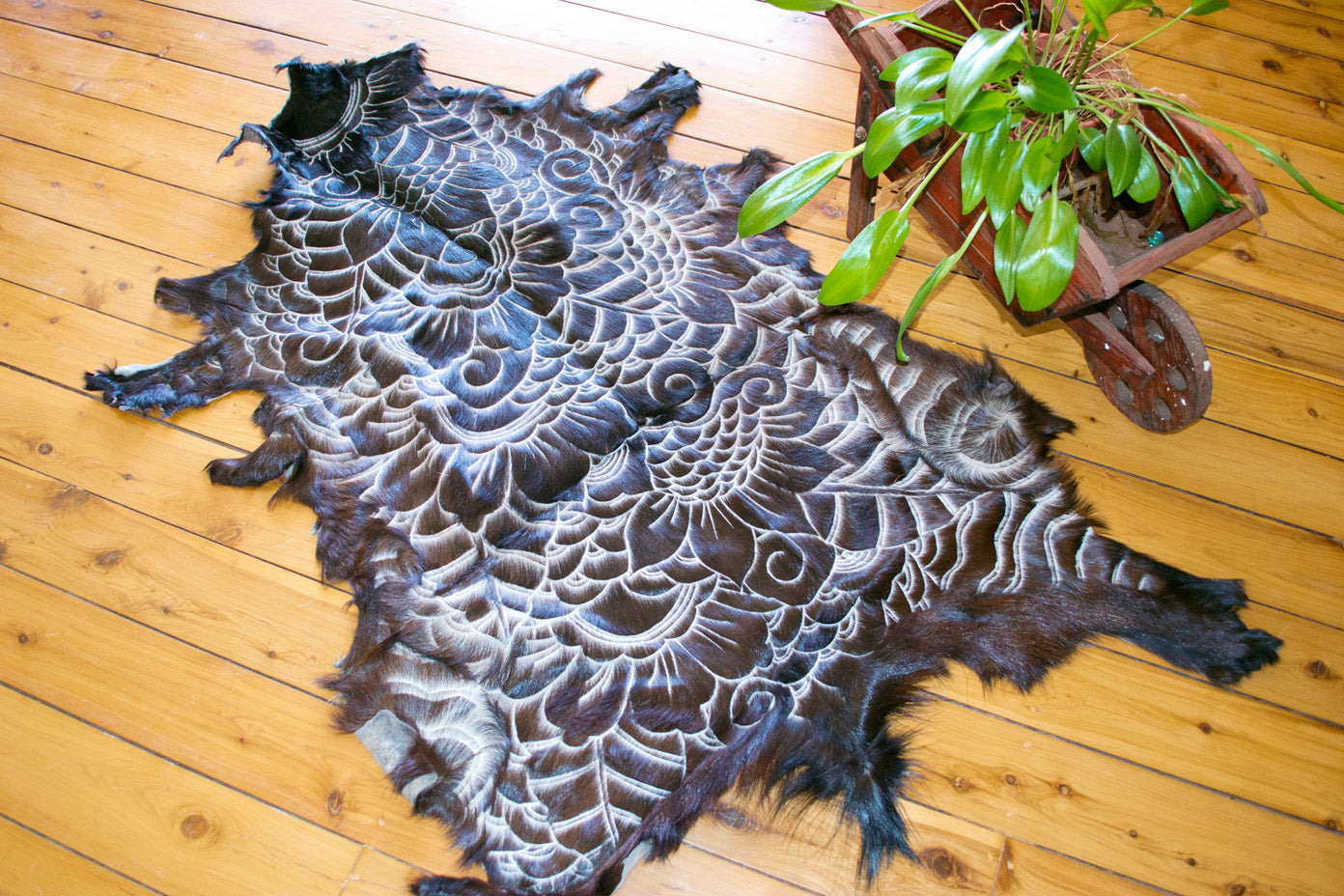 Carved Rug Collection