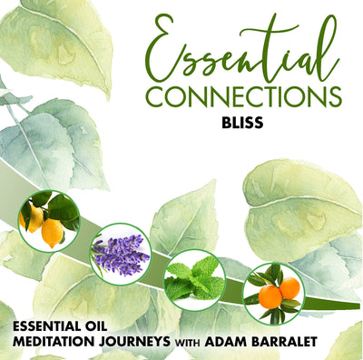 Essential Connections - Vol.1 - Bliss