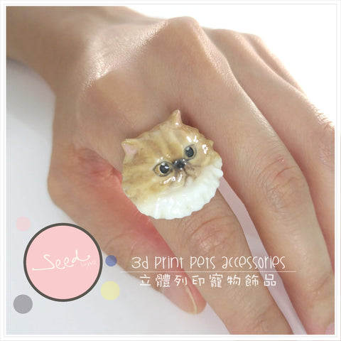 Persian Cat Colored ring put on finger
