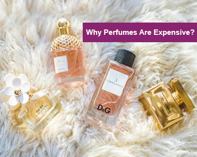 Why Perfumes Are Expensive?