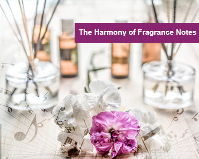 The Harmony of Fragrance Notes