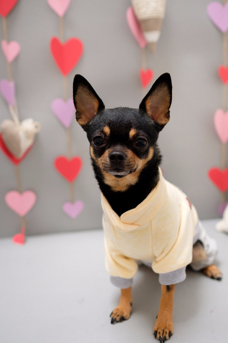 Valentine Dog Jumpsuit
