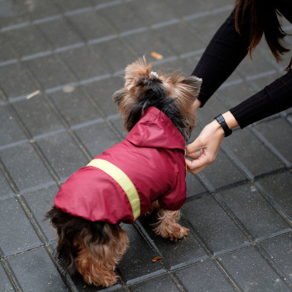Dog Raincoat by Elikko