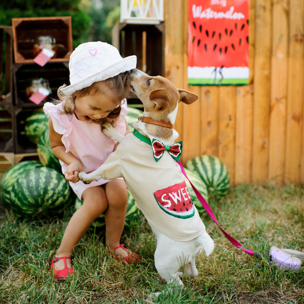 Watermelon Dog Shirt