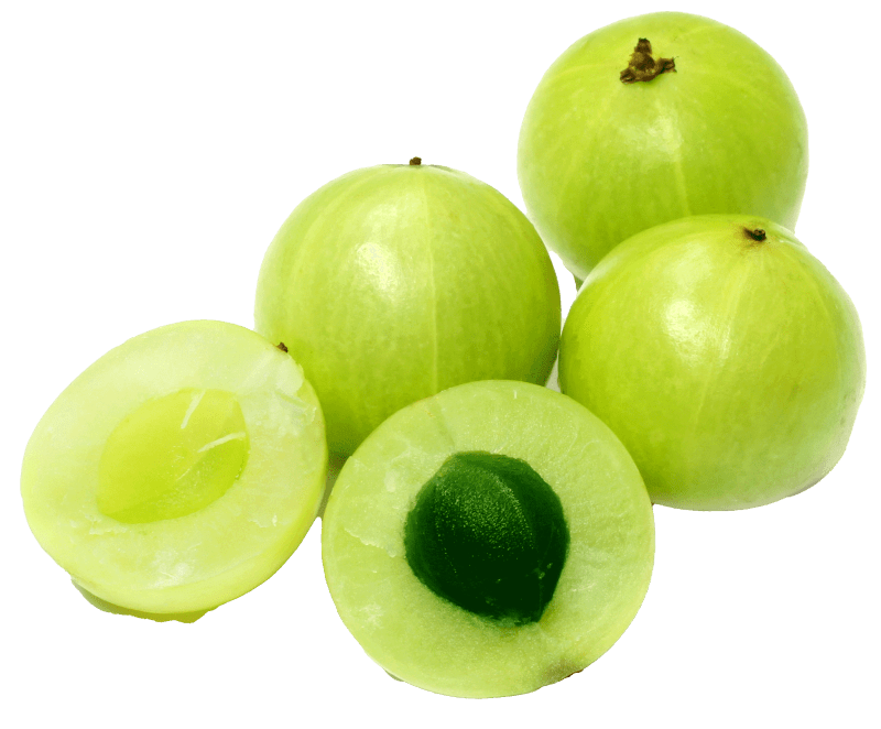 Organic Amla Berry from India