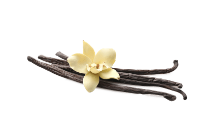 Vanilla from Madagascar