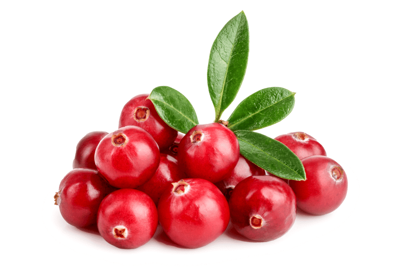 Organic Cranberries from Finland