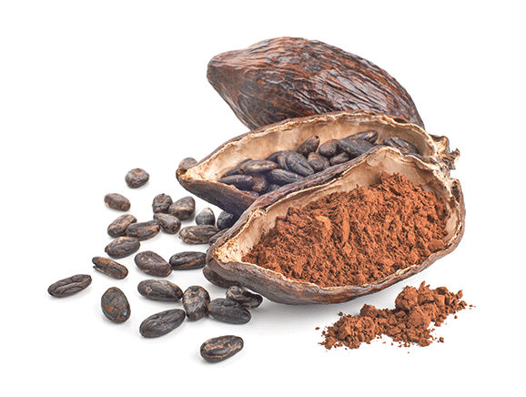 Raw Cacao from Peru - YourSuperFoods Ingredient