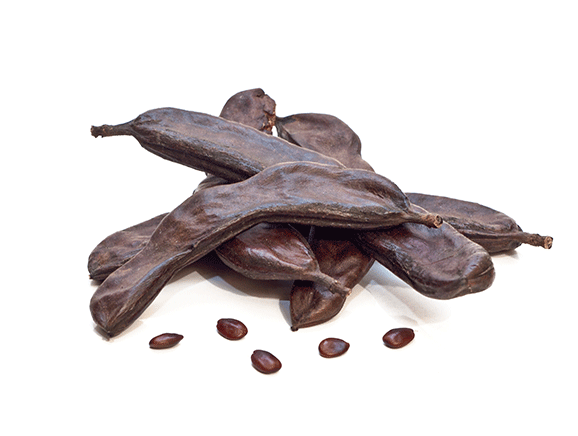 Carob from Italy - YourSuperFoods Ingredient