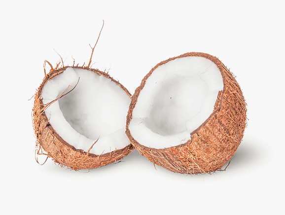 Coconut from Sri Lanka - YourSuperFoods Ingredient