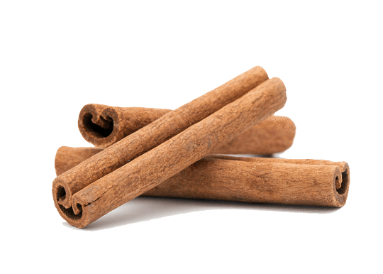 Organic Cinnamon from India