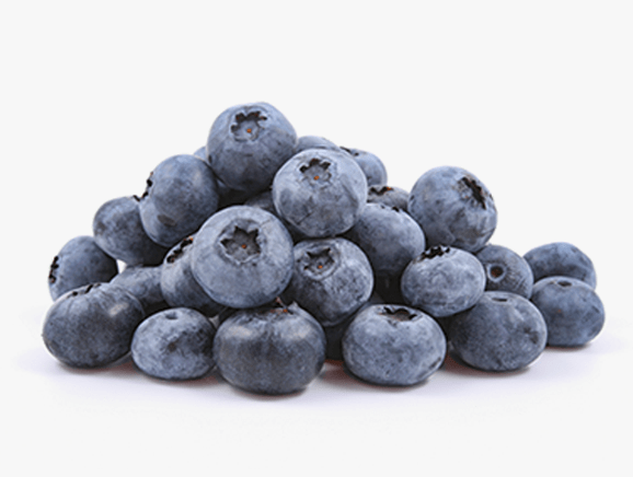 Blueberries from Finland - YourSuperFoods Ingredient