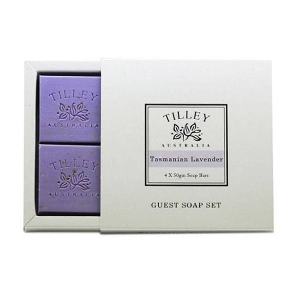 Tilley at Tasmanian Lavender Gifts