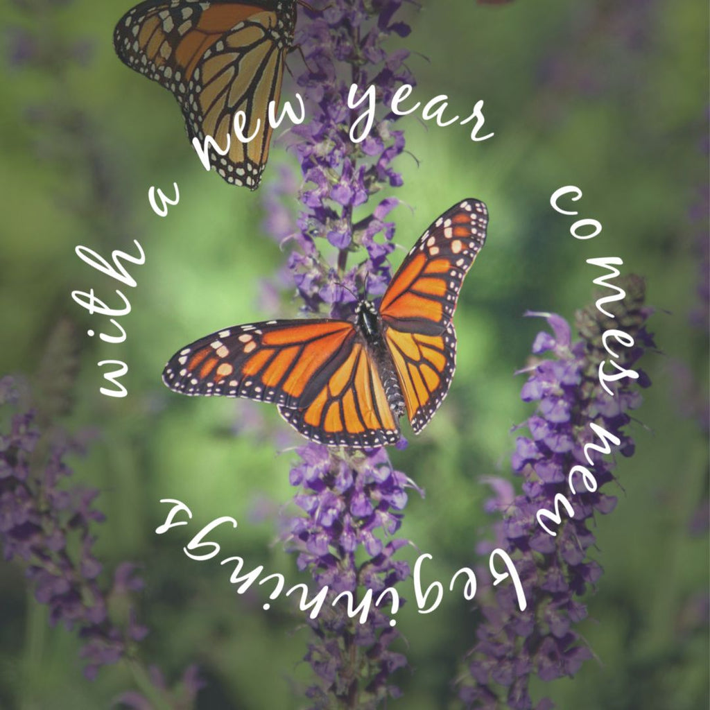 Happy New Beginnings 2020 from Tasmanian Lavender Gifts