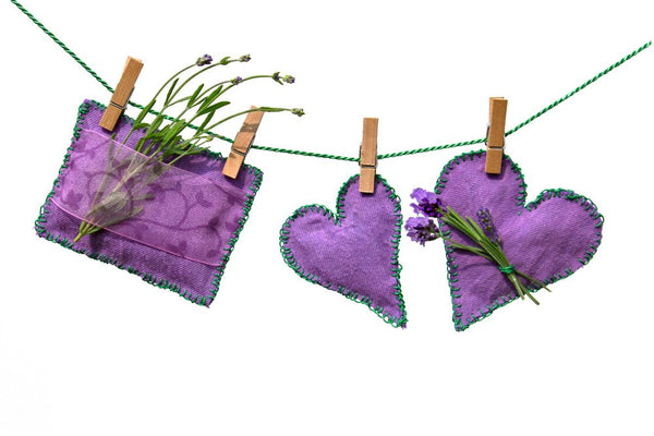 The Wonders of Lavender at Tasmanian Lavender Gifts