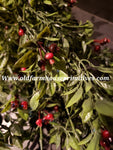 "#RH79 19"" Tall PEA LEAF WITH BERRIES BUSH"