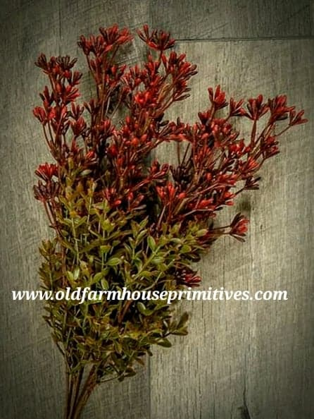 #NEBB New England Boxwood And Berry Bush #1 Seller