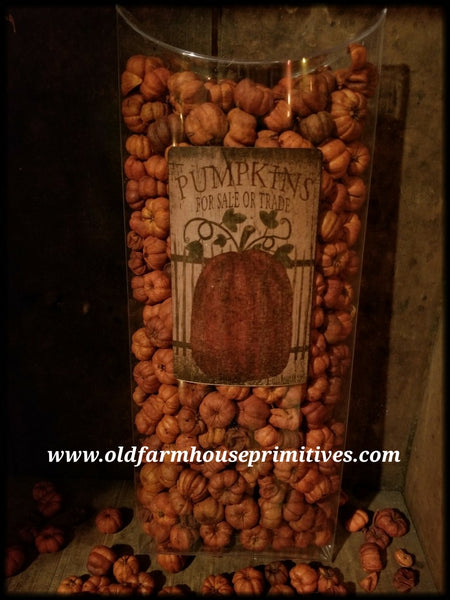 #FP11 Natural Unscented Dried Putka Pod Mini PUMPKIN 🎃 #1 Seller