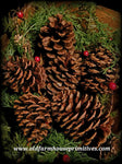 #SPC2 Highly Scented Cinnamon Pinecones #1 TOP SELLER
