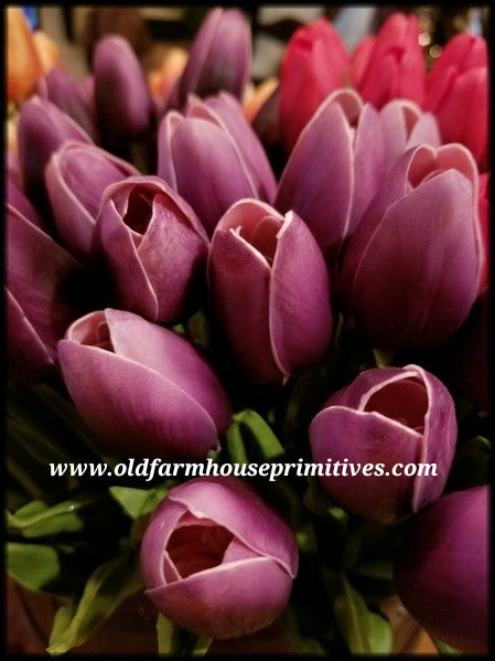#PT9 Spring Purple Tulips