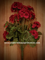 #RH122 Red Geranium Bush ~ TOP SELLER!