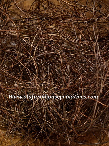 #PAVG2 Primitive Angel Vine Grass