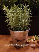 "#PPH3 Primitive Potted Herbs In Metal Pot ""THYME"""