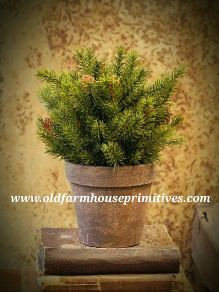 #LHHH13 White Spruce Potted Plant 10.5""