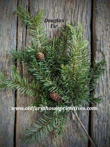 #RH35 Douglas Fir Spray With Pine Cones