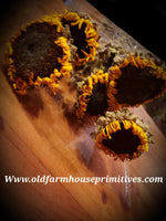 #DSF5 Primitive Dried Sunflowers Set Of 5 🌻🌻🌻🌻🌻