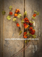#RH28  Primitive Fall Orange Sienna Hops Stem ★DUE BACK IN STOCK SOON★