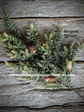 #RH37 Sargent Spruce Spray With Pine Cones