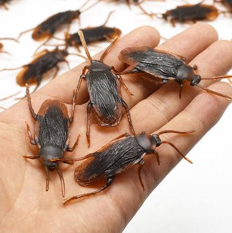 10Pcs Cockroach Prank Toy