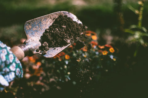 Close-up of a garden spade with soil