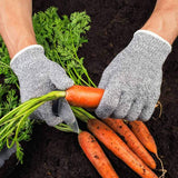 NoCry Cut Resistant Gloves With Grip Dots for harvesting carrots