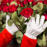 NoCry Gardening Gloves for handling roses
