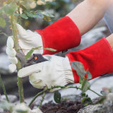 NoCry Gardening Gloves for rose pruning outdoor