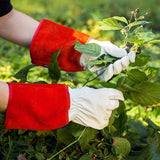 NoCry Gardening Gloves for pruning blackberry bushes, pulling weeds and thistles