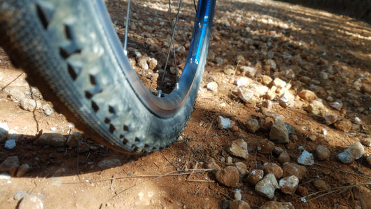 RIDE CANCELLED - Plantation Damnation Gravel Ride