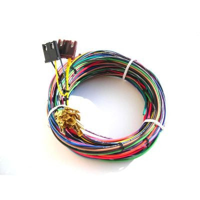 21000 - Engine Harness only for 20101 w/o bulkhead connector - 10 Circuits